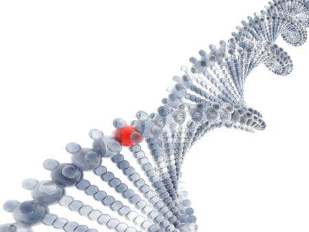 3D DNA photo