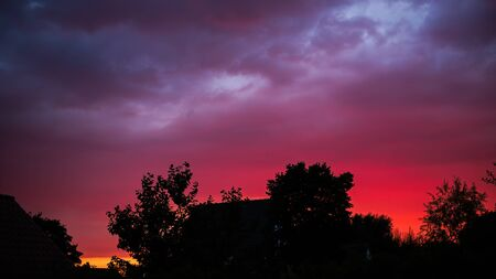 A deep red violet sunset in the silhouette of trees