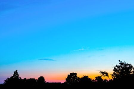 An orange sunset against a blue sky in the shade of trees