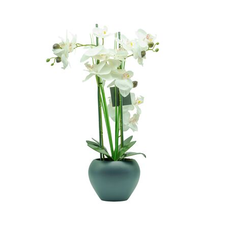 An artificial flower in an anthracite-colored flowerpot, studio shot Stok Fotoğraf - 149152608