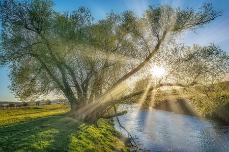 Sunset on a small river with sun rays between the branches Stok Fotoğraf - 150361431