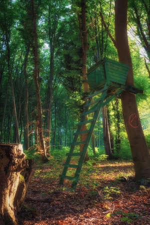 A hunter high chair in the middle of the forest while the sun sets Stok Fotoğraf - 152610498