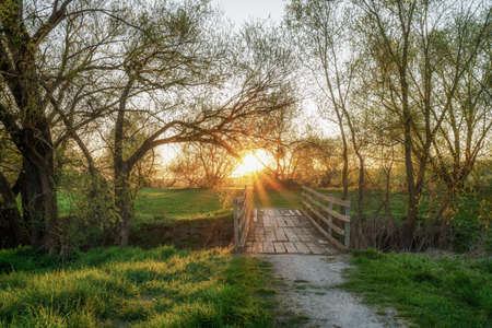 An idyllic sunset on an old wooden bridge and tree branches in the background Stok Fotoğraf