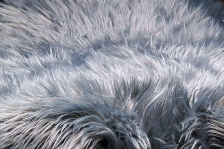 A fur-like silver gray carpet structure, close-up