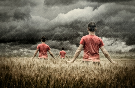 Young peoples touching spikes of wheat while is raining -NOTE-High contrast photography/Grain was added Stock Photo - 11293172