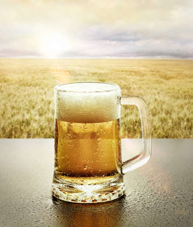 Glass of cold beer sitting on table at sunset in front of a wheat field Stock Photo - 12712535