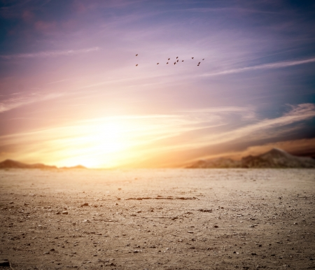 일몰 사막의 idylic는 풍경 스톡 콘텐츠