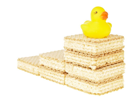 duckie: step up of wafer stack with duck top on top on white background