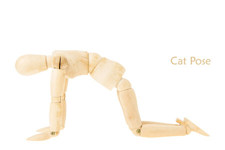 demonstration of wood manikin in cat pose on white background. this pose is part of yoga training. Stock Photo
