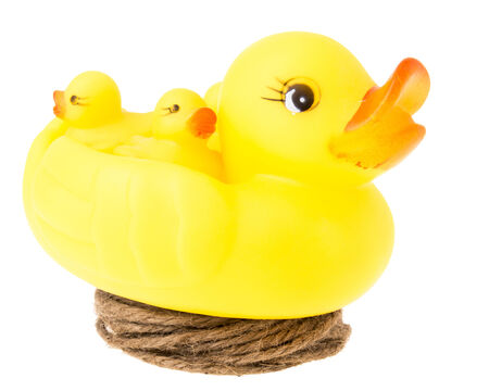 big duck and small duck on hemp coil like nest on white background