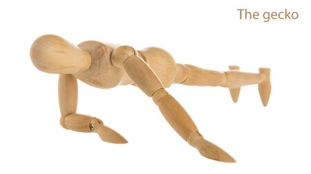demonstration of wood manikin in the gecko exercise pose on white background.