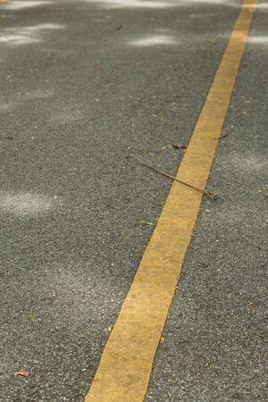 perspective of yellow solid line on gray roadway in park Stock Photo