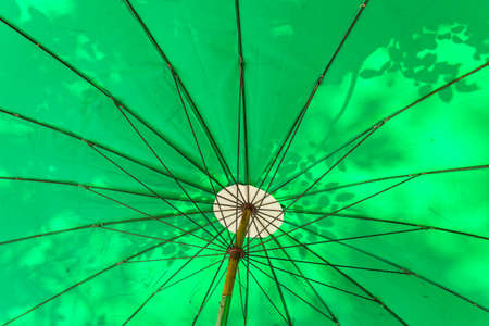 background of tree shadow on green umbrella in sunlight Stock Photo