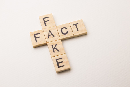 fact and fake - word phrase by letters block wood crossword on white paper background, in conception of news and information