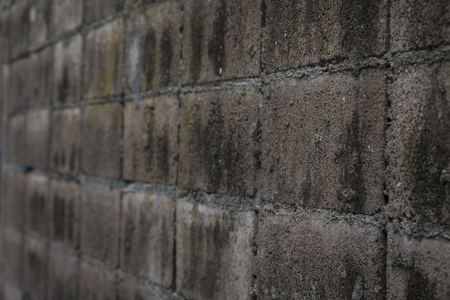 perspective of old abandoned grungy brick wall background in nature light, shallow depth of field
