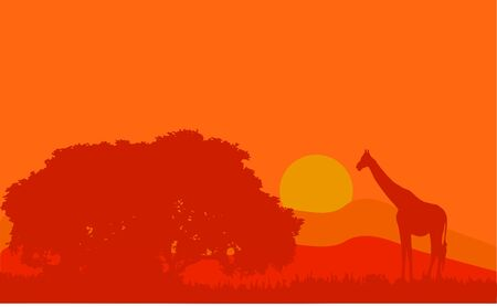 Vector illustration of a classic African landscape Banque d'images - 138230032