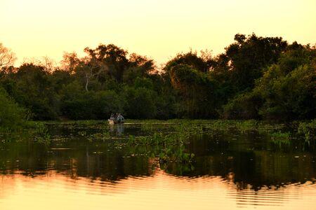 Classic wonderful panorama of a Wetland, Pantanal, Brazil