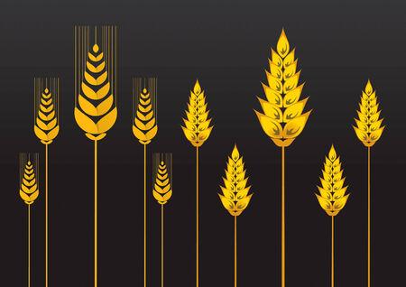 Wheat Set 1 Design Element Drawing Stock Vector - 8643826