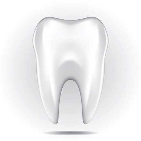 tooth root: Dental character drawing on a white background Illustration