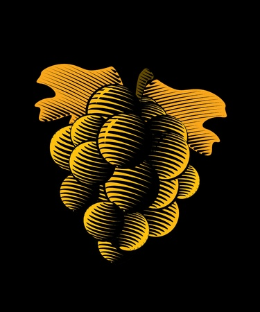 cluster: Drawing of grapes on a black background