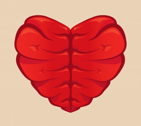 Heart shaped brain drawing on a colored background Banco de Imagens - 24247157