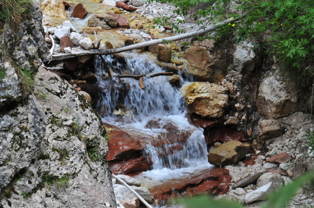 Small wild stream in the mountains