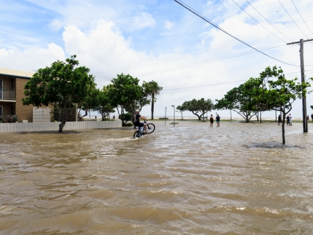 BRISBANE, QLD, AUSTRALIA - January 27  A man on a bicycle does a wheelie in the flooded street in Sandgate in the floods of 27 January 2013 Editorial