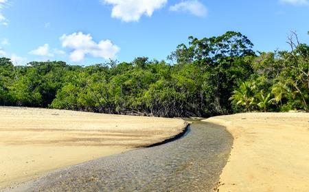 daintree: Stream leaving the Daintree Rainforest on Cow Bay beach in Queensland, Australia Stock Photo
