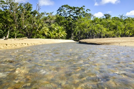 daintree: Stream on Cow Bay Beach, with the green Daintree Rainforest in the background Stock Photo