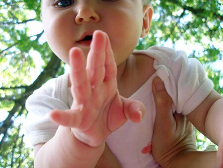 treed: Hands holding baby up against a treed background