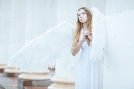 angel alone: Girl in a white dress with wings and folded her hands in prayer