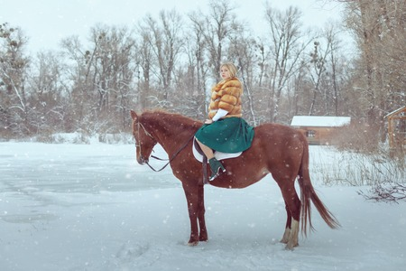 Woman is sitting on a horse in a winter park.