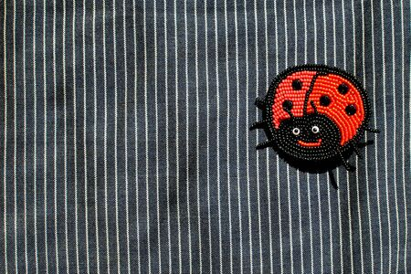 Red ladybug bead brooch on dark striped background