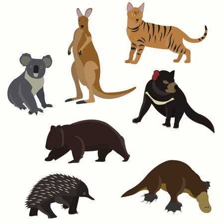 platypus: Set of australian animals. Stock Photo