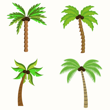 Set of Palm trees illustration isolated on white background Illusztráció