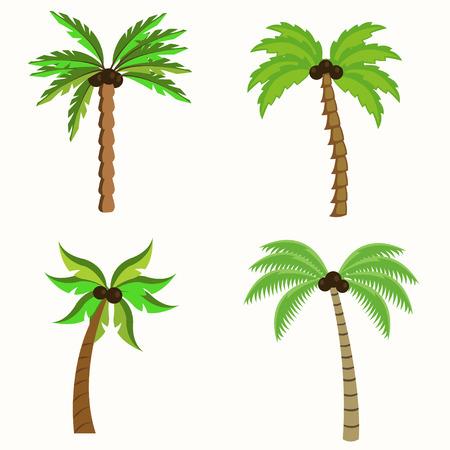Set of Palm trees illustration isolated on white background Illustration