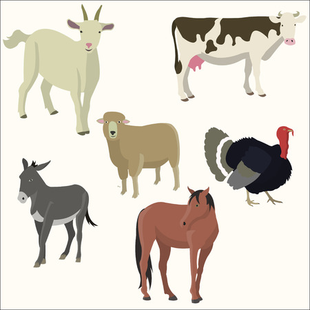 Set of popular colorful farm animal vector illustration, isolated on lighter background