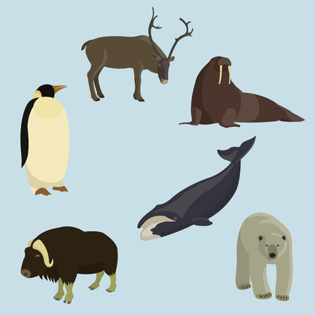 Set of various animals of the north pole, isolated on blue background Illustration
