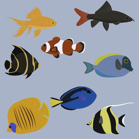 bream: A Vector set of marine animals. Sea life. Flat style, isolated on aqua blue
