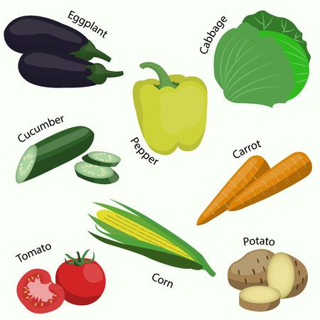 Satz des Gemüses auf weißem Hintergrund.