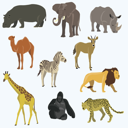 African animals cartoon vector set. Elephant, giraffe, rhinoceros, gorilla, lion, camel, zebra, llama Illustration