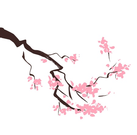 japanese garden: Spring blossom cherry tree branch Illustration