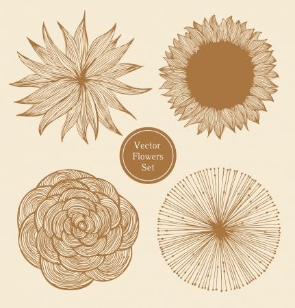 Uitstekende bloemen gezet Lineaire bloemen elementen