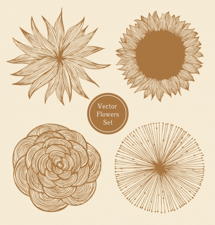 Vintage flowers set  Linear floral elements  Vector