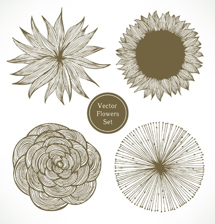 Vintage flowers set. Retro floral elements  Vector