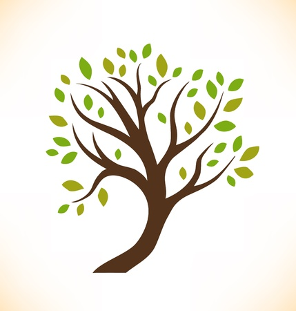 tree isolated: Vector aislado �rbol decorativo vegetal estilizada imagen del �rbol de la corona Vectores