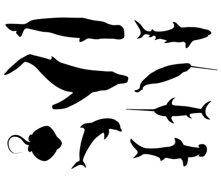 Set of black isolated contour silhouettes of fish, whale, cachalot, sperm-whale, shark, narwhal, unicorn-fish, numb-fish, cramp-fish, dolphin  Icons collection of ocean animals Vector