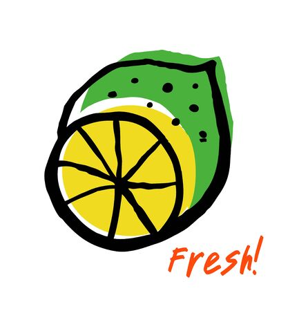 citron: Sketch of fresh lime. Drawn isolated fruit in grunge style Illustration