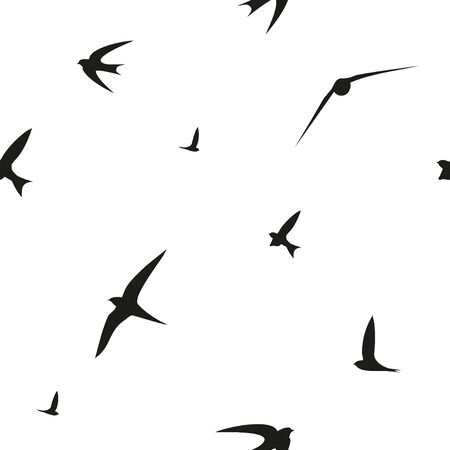 Swallow, rapide, les oiseaux. modèle vectoriel graphique. seamless décoratif