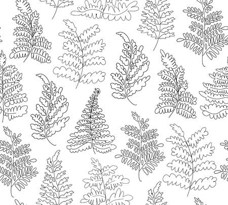 Floral vector ferns pattern. Hand drawn botanical texture. Decorative linear background Banco de Imagens - 87049544